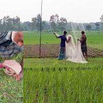 নকলায় অবাধে নিধন হচ্ছে অরণ্যের পাখি ॥ বিপন্নের পথে নিপুণ কারিগর বাবুই